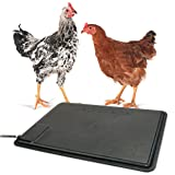 K&H Pet Products Thermo-Chicken Heated Pad Black