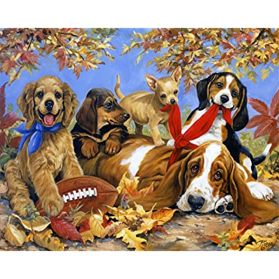 1000 PCS Adult Jigsaw Large Jigsaw Puzzle, Cute pet, Adult Decompression Child Educational Gift.: Toys & Games