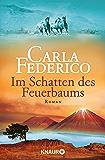 Im Schatten des Feuerbaums: Roman (Die Chile-Trilogie 3) (German Edition)