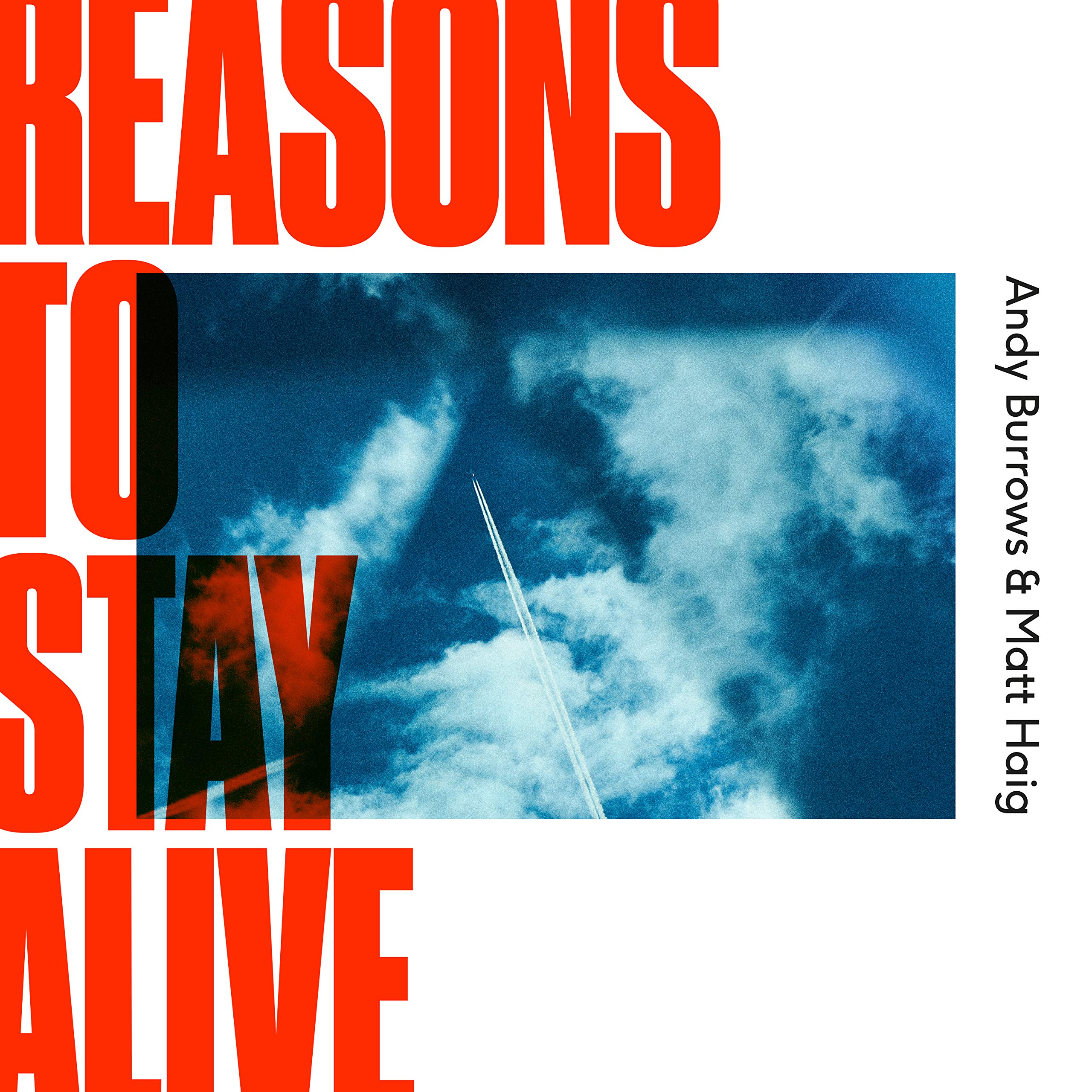 Vinilo : BURROWS, ANDY / HAIG, MATT - Reasons To Stay Alive (United Kingdom - Import)