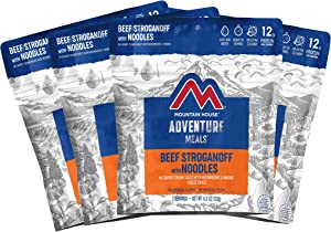Mountain House Beef Stroganoff   Freeze Dried Backpacking & Camping Food   Survival & Emergency Food