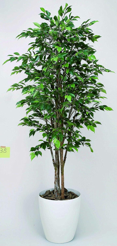 光触媒 ロイヤルベンジャミン1.8m【人工観葉植物】 B077VPVF23