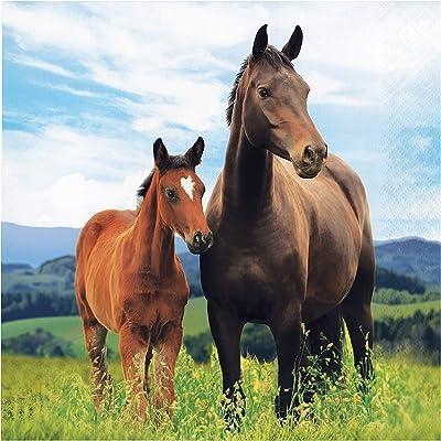 Wild Horse Napkins, 48 ct: Toys & Games