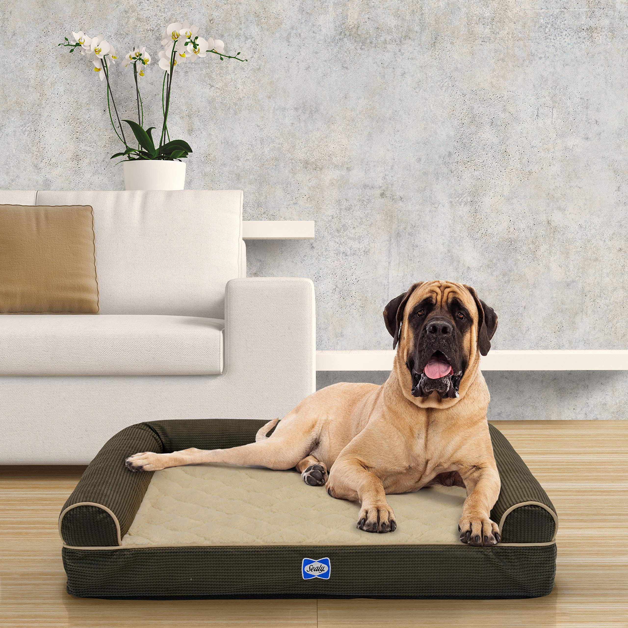 Sealy Ultra Plush Sofa-Style Bolster Dog Bed Brown, X-Large Jumbo - Orthopedic Foam Pet Bed with Machine Washable Plush Cover