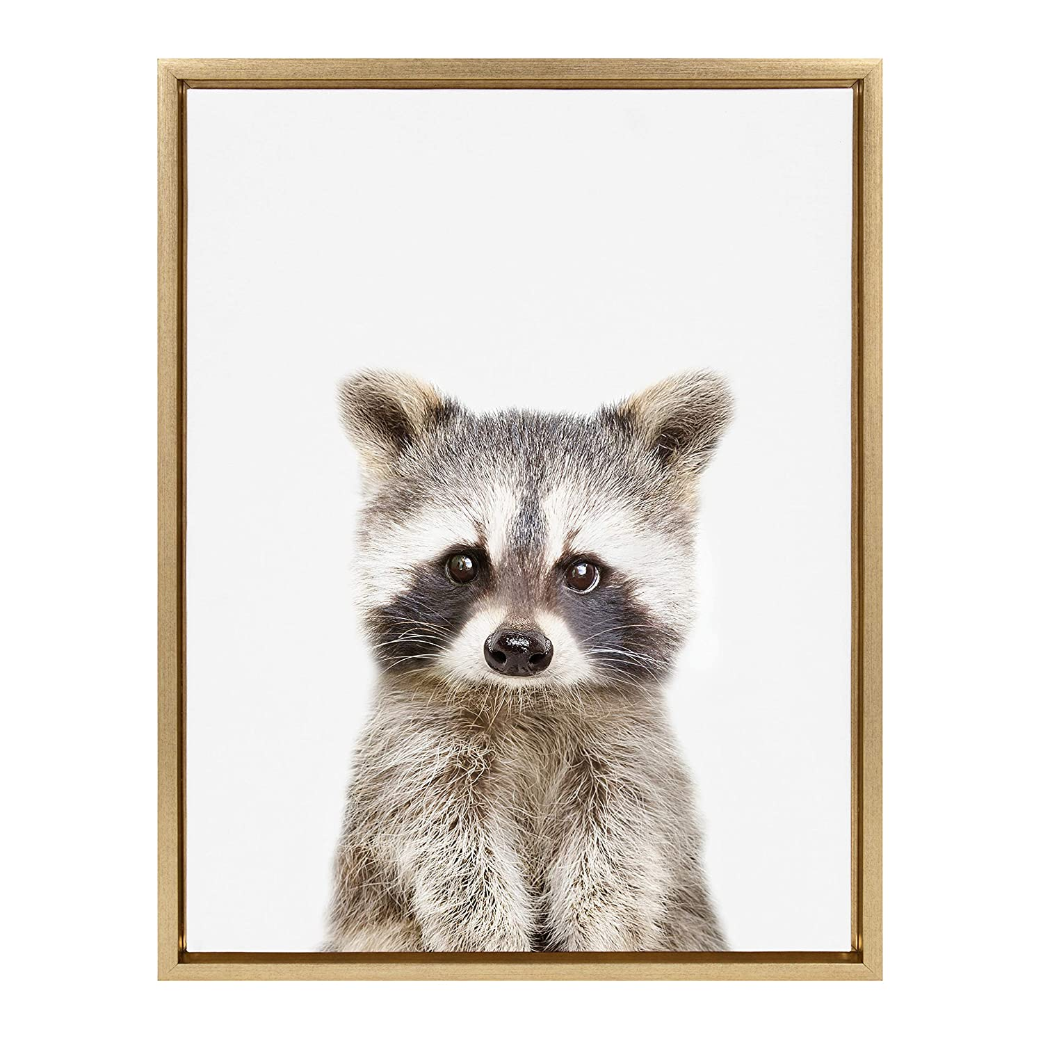 Kate and Laurel Sylvie Raccoon Portrait Framed Canvas Wall Art by Amy Peterson, 18x24 Gold, Adorable Animal Home Decor
