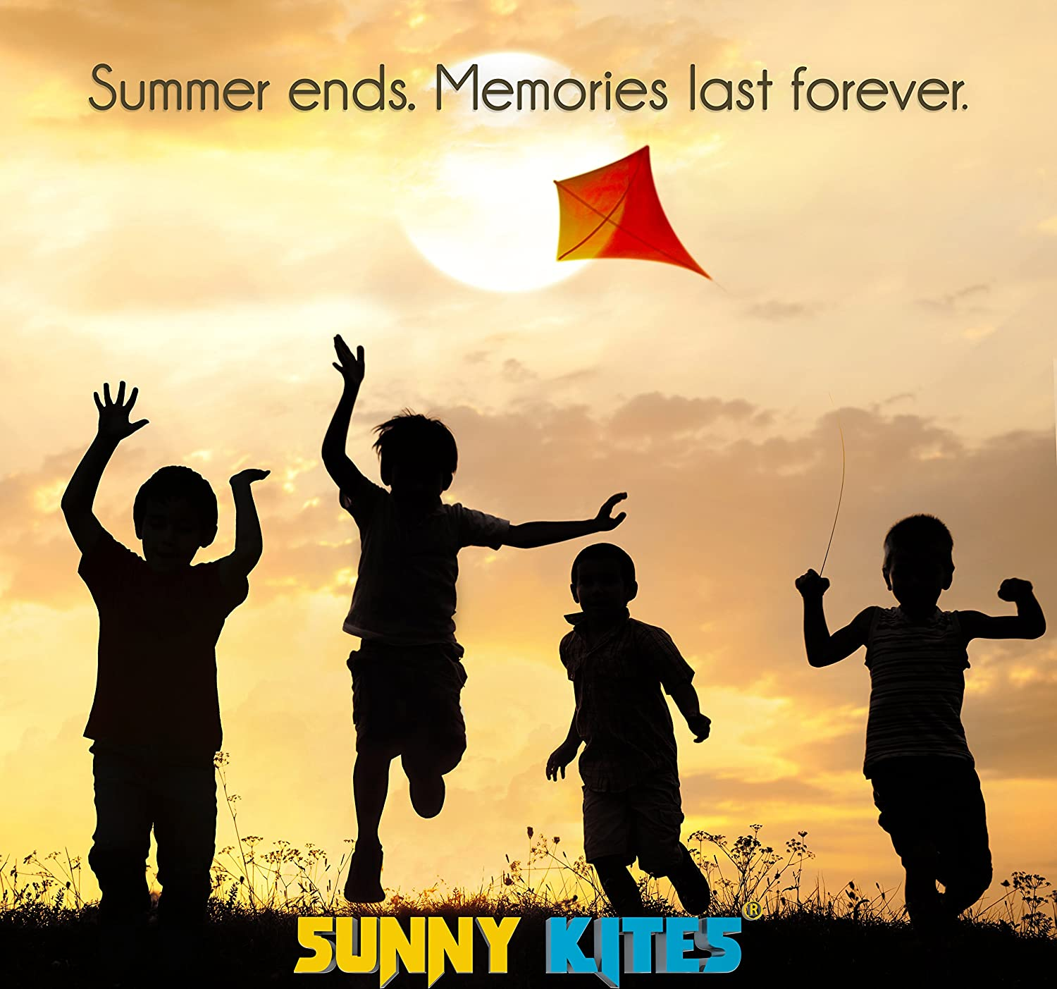 Image result for free Pictures of Kids with kites