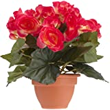 MICA Decorations 977001 Blumen, Begonia, rosa