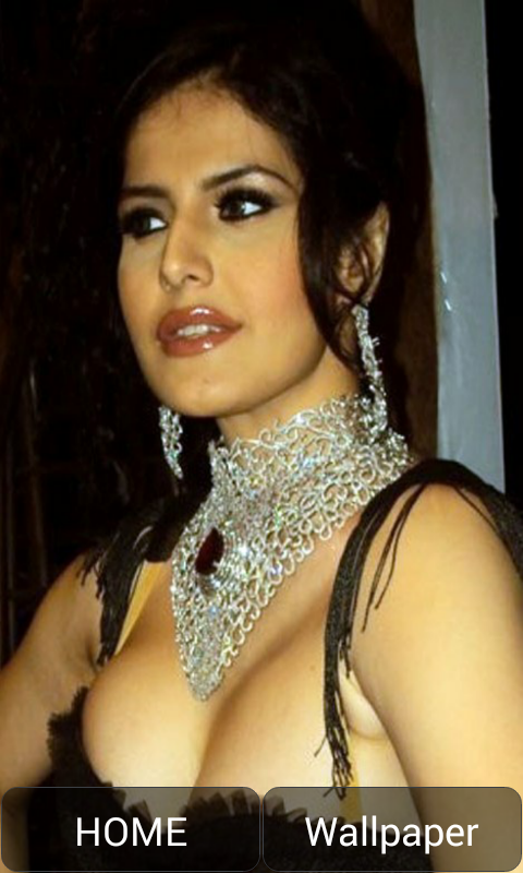Sexy pics of zarine khan