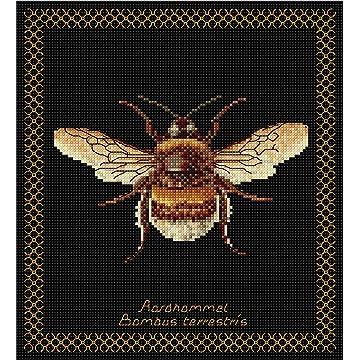 best Thea Gouverneur Bumble Bee reviews