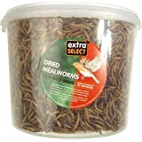 Extra Select Mealworms Tub, 5 L