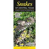 Snakes of Central Texas: A Guide to Common & Notable Species (Quick Reference Guides)