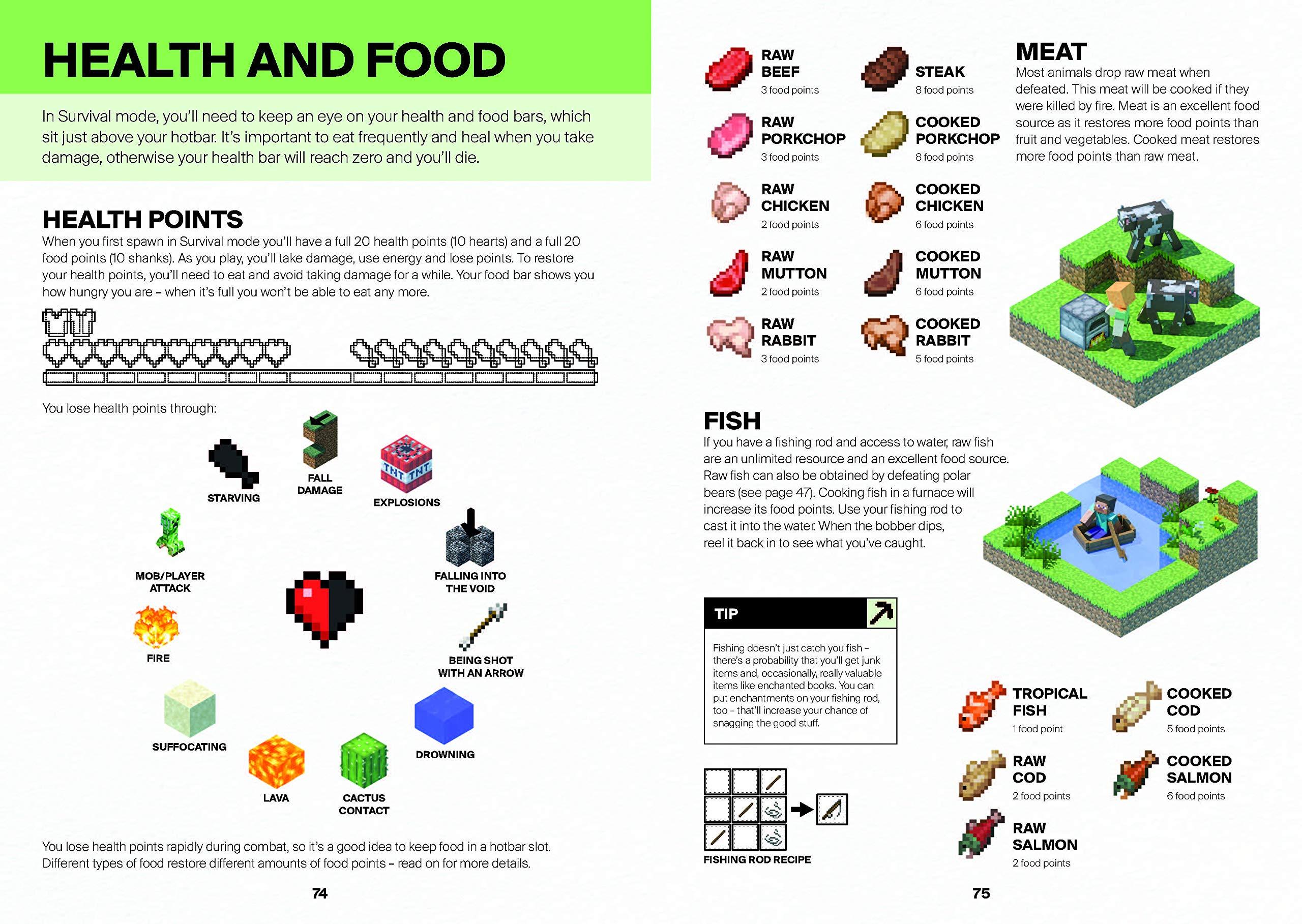 Minecraft: Guide to Survival  Amazon.com.br