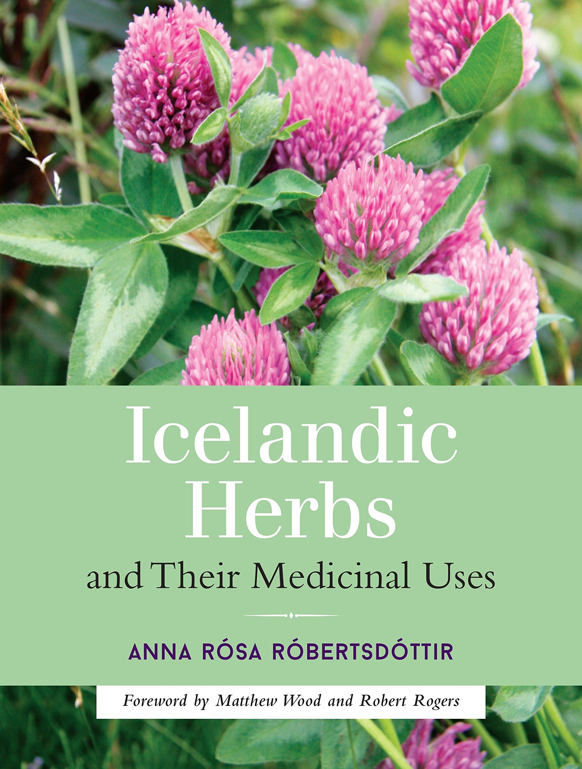 Read Online Icelandic Herbs and Their Medicinal Uses pdf epub