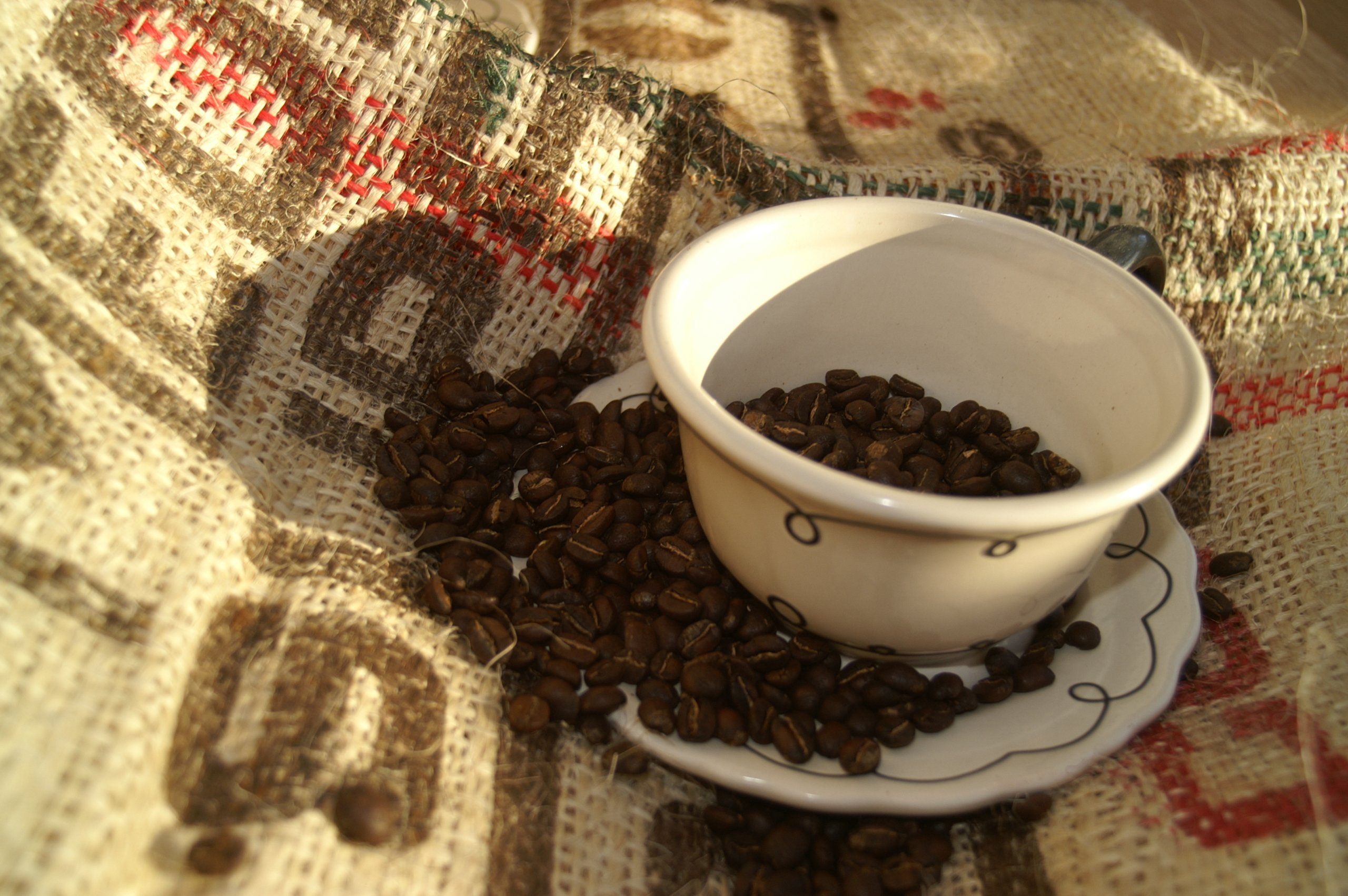 Colombian Medellin Supremo Unroasted Coffee Beans, 5 Pounds by RhoadsRoast Coffees