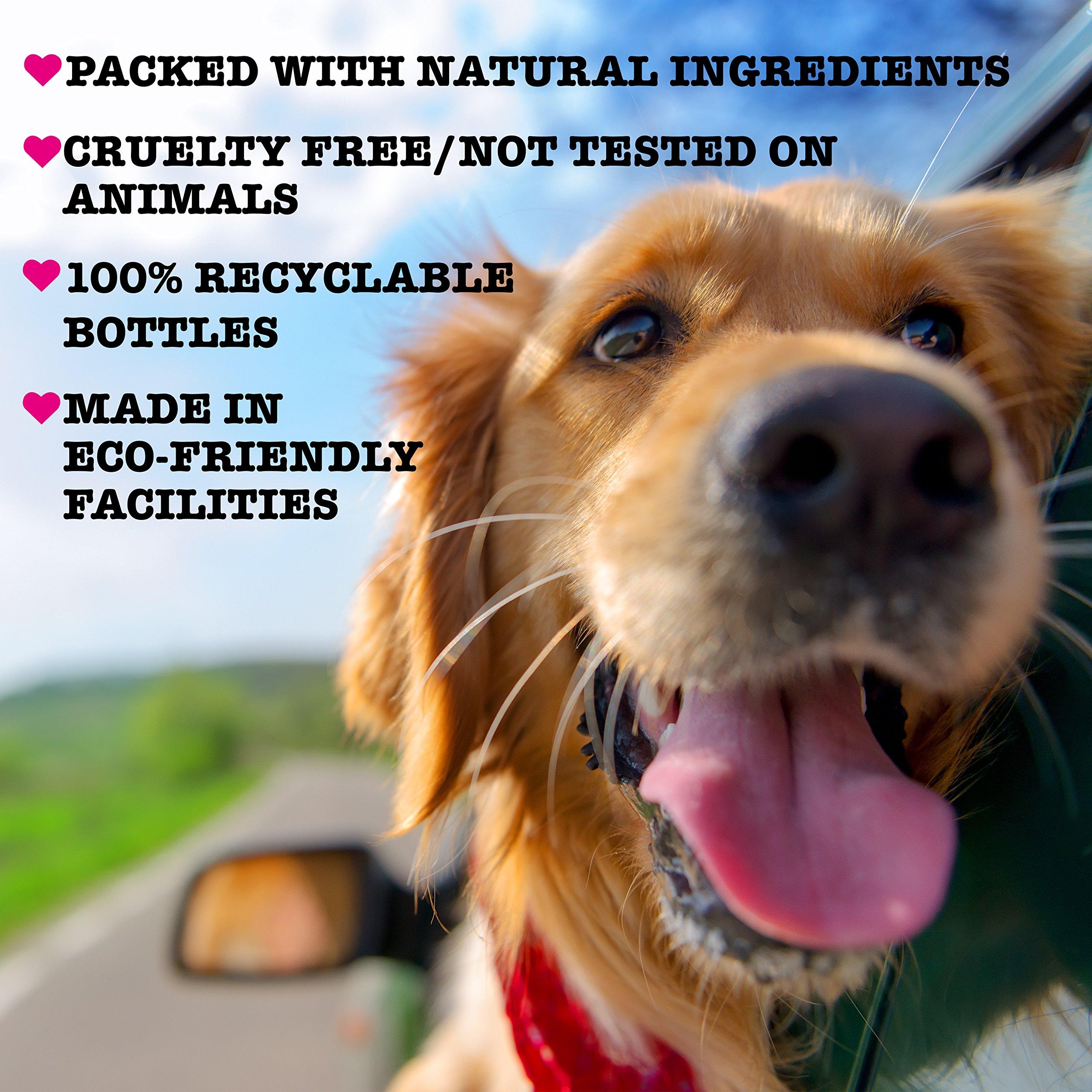 Pet Head Fur Ball Detangling Spray for Pets Strawberry Yogurt -- 15.2 fl oz by The Company of Animals (Image #6)
