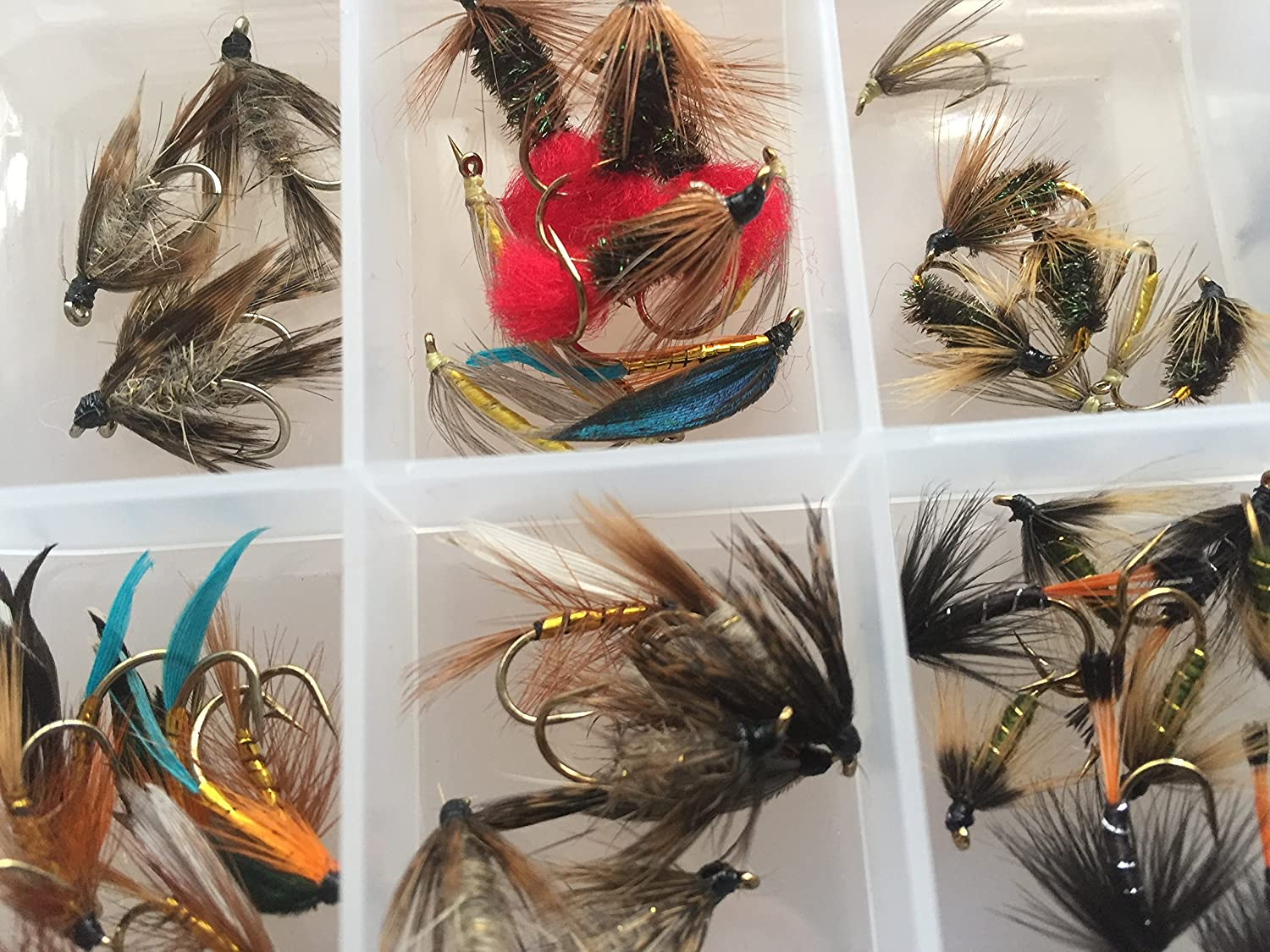 BestCity 50 plus Fishing Flies WET Selection FLY Selection TROUT more than 50 Flies in BOX PACK#9
