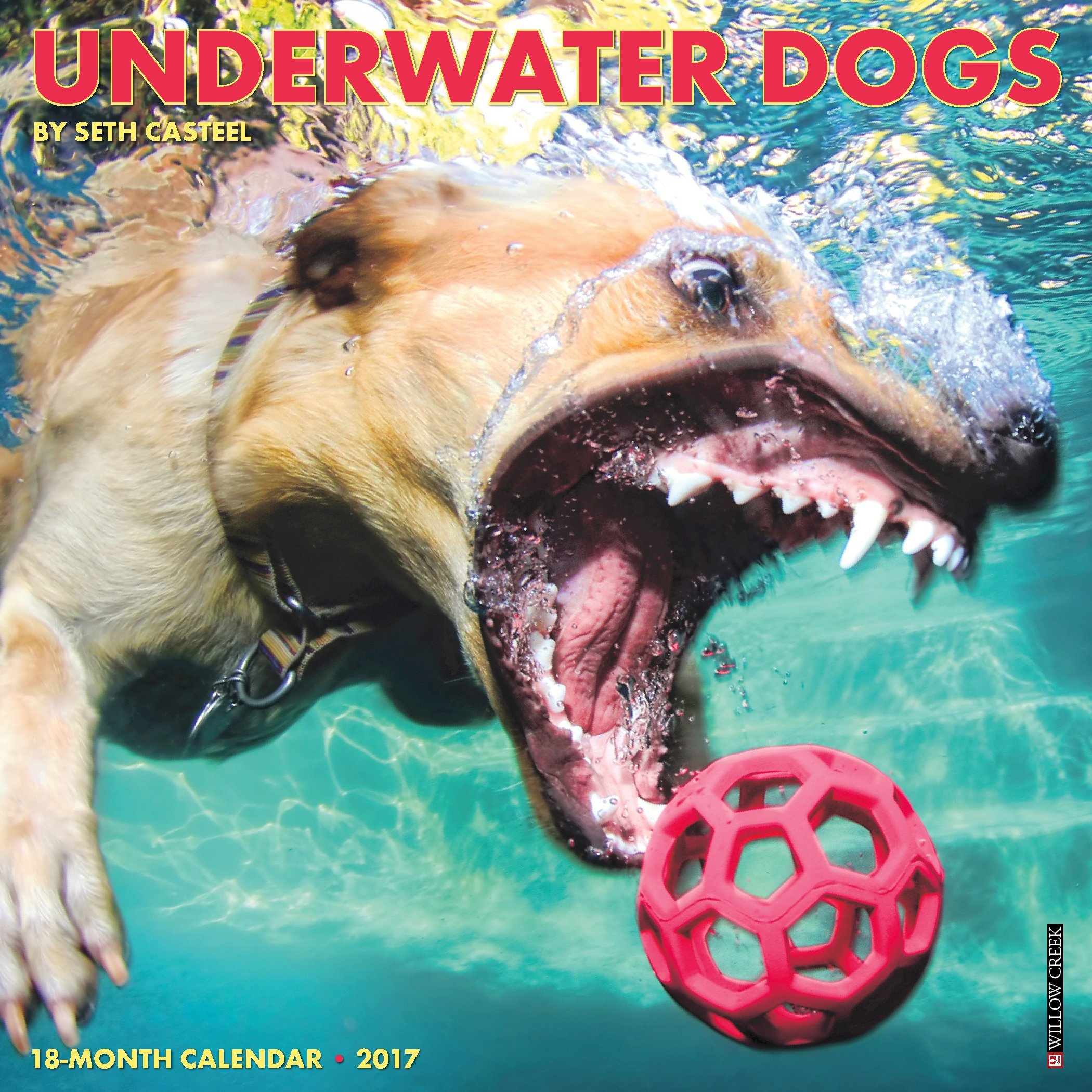 2017 Underwater Dogs Mini Calendar product image