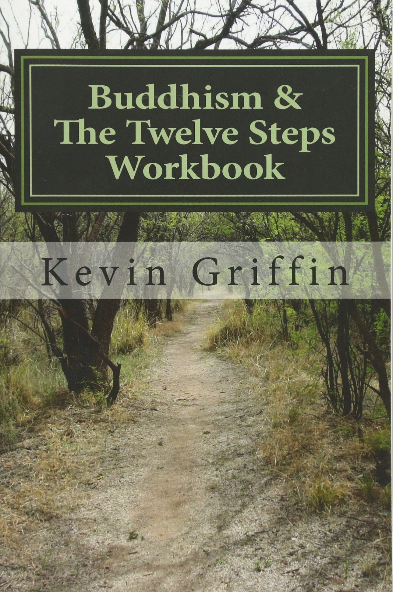 1b37a6eff15b2 Buddhism and the Twelve Steps: A Recovery Workbook for Individuals and  Groups Paperback – January 1, 2014