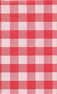 Charming Summer Picnic Gingham Plastic Tablecloth 54 In X 108 In   Red U0026 White  Checkered By