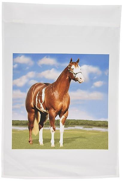 3dRose Fl_3536_1 Champion Paint Quarter Horse Garden Flag, 12 By 18 Inch