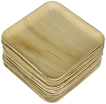 Verterra Compostable Dinnerware 8u0026quot; Square Entree Plate (25 Pack) Natural  sc 1 st  Amazon.com & Amazon.com | Verterra Compostable Dinnerware 8