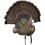 Avian-X Trophy Tom Turkey Decoy