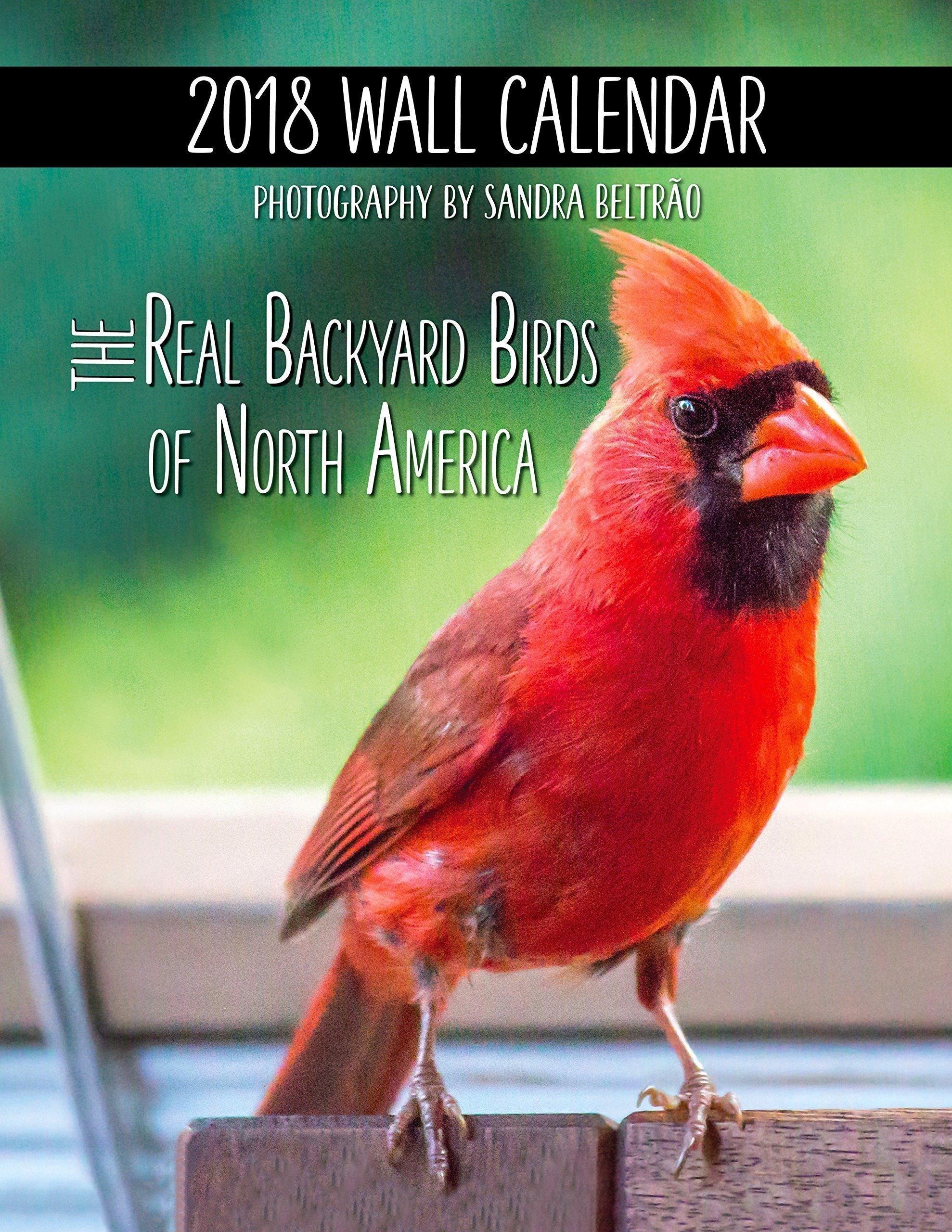 2018 Wall Calendar (The Real Backyard Birds of North America)
