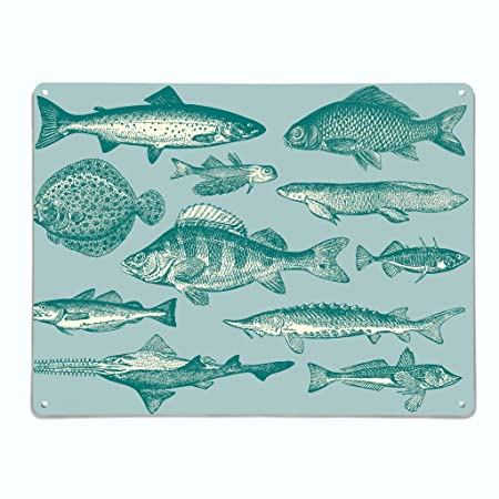 lowest discount new specials free delivery The Metal Art Company | Fish Illustration - Large Steel ...