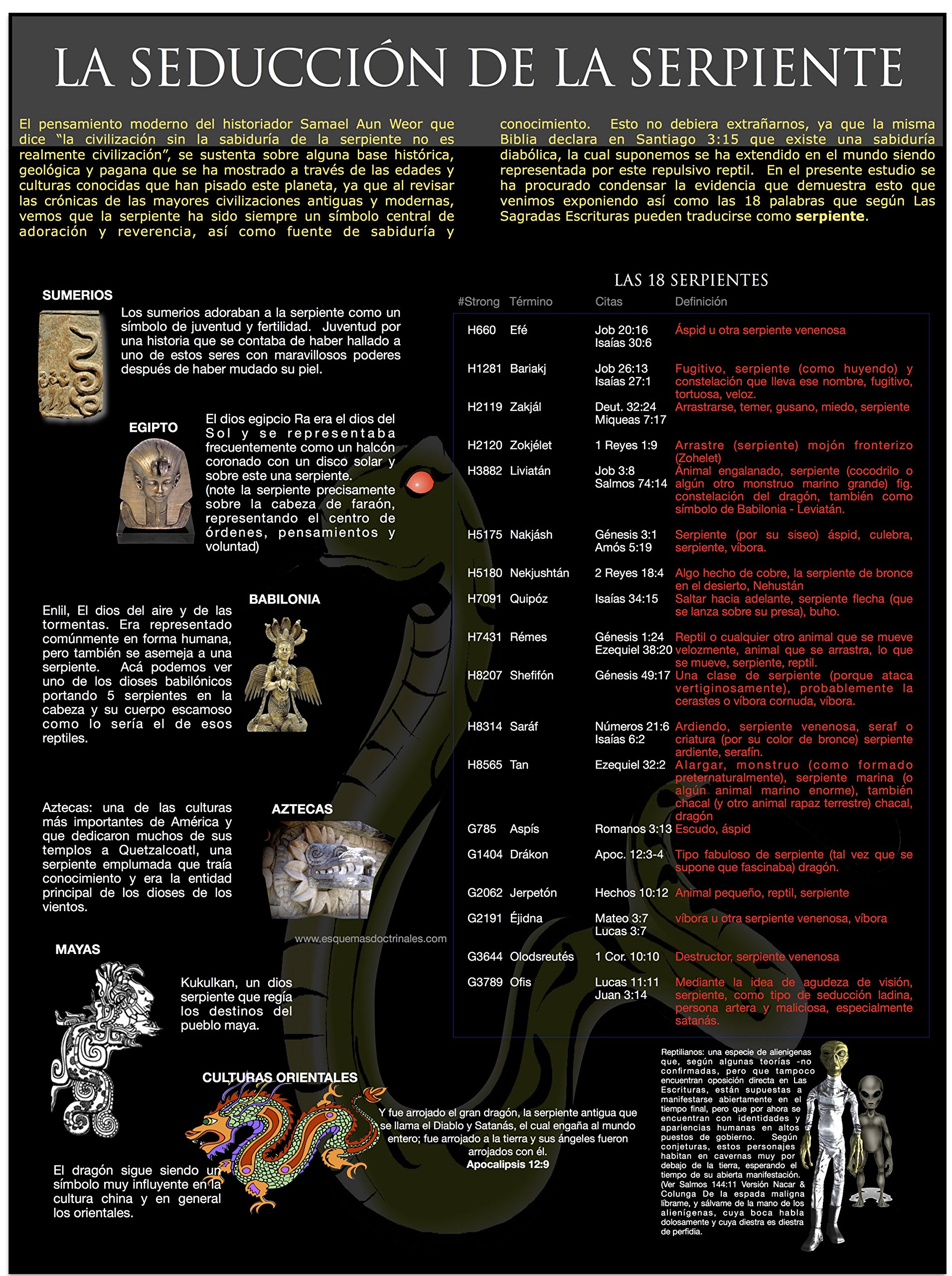 Esquemas Doctrinales III: Werner Meyer: 9789534890363: Amazon.com: Books