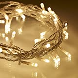 Lights4fun Indoor Fairy Lights with 40 Warm White LEDs on Clear Cable
