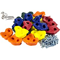 Squirrel Products 20 Assorted Rock Climbing Holds with Hardware -Jungle Gym or Swing Set Accessory