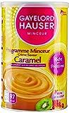 Gayelord Hauser Protéines Caramel Boite Diététique 350 g