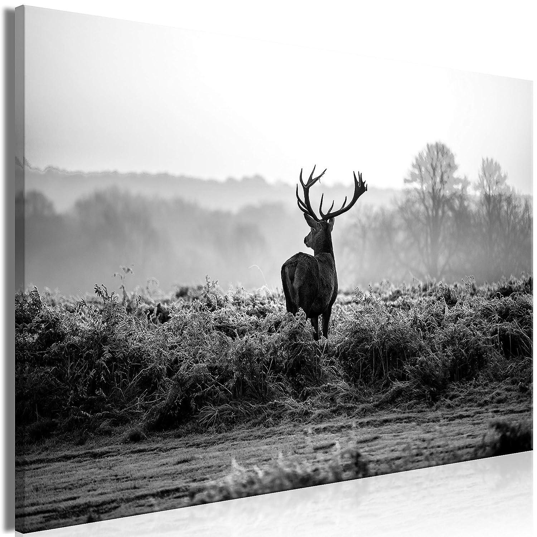 Natur Tier Landschaft g-B-0049-b-a murando Bilder Hirsch 90x60 cm Vlies Leinwandbild 1 TLG Kunstdruck modern Wandbilder XXL Wanddekoration Design Wand Bild