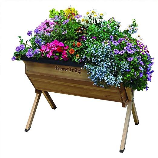 Raised vegetal maceta grande de madera jardín Trug para macetas de flores por crecer + libre de herramientas de 26 litros de capacidad (crecer las semillas): Amazon.es: Jardín