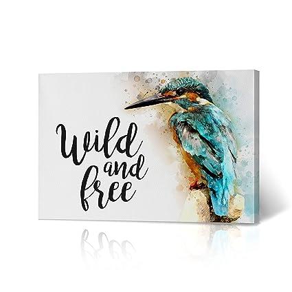 Amazon Com Beautiful Bird Wild And Free Quote Canvas Print