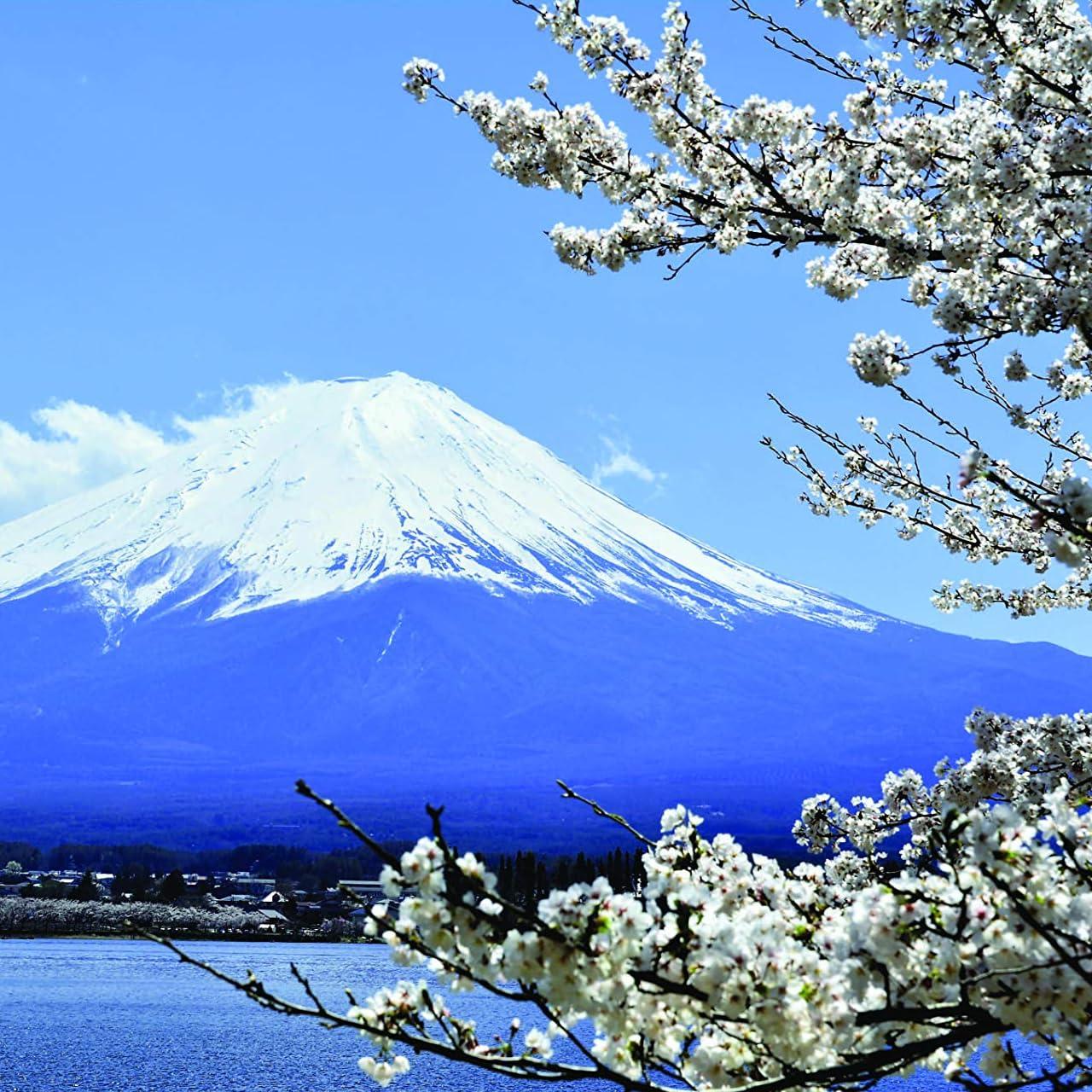 パワースポット Ipad壁紙 富士山 桜 令和5月6月 その他 スマホ用画像118378