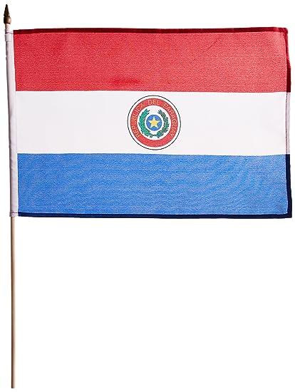 Amazon.com: Paraguay Bandera 12 x 18 inch: Jardín y Exteriores