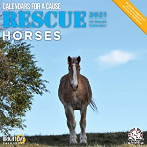 2021 Rescue Horses Wall Calendar by Bright Day, 12 x 12 Inch, Cute Farm Animals Calendars for a Cause