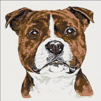 Cross Stitch Chart Kit Staffordshire Bull Terrier Dog