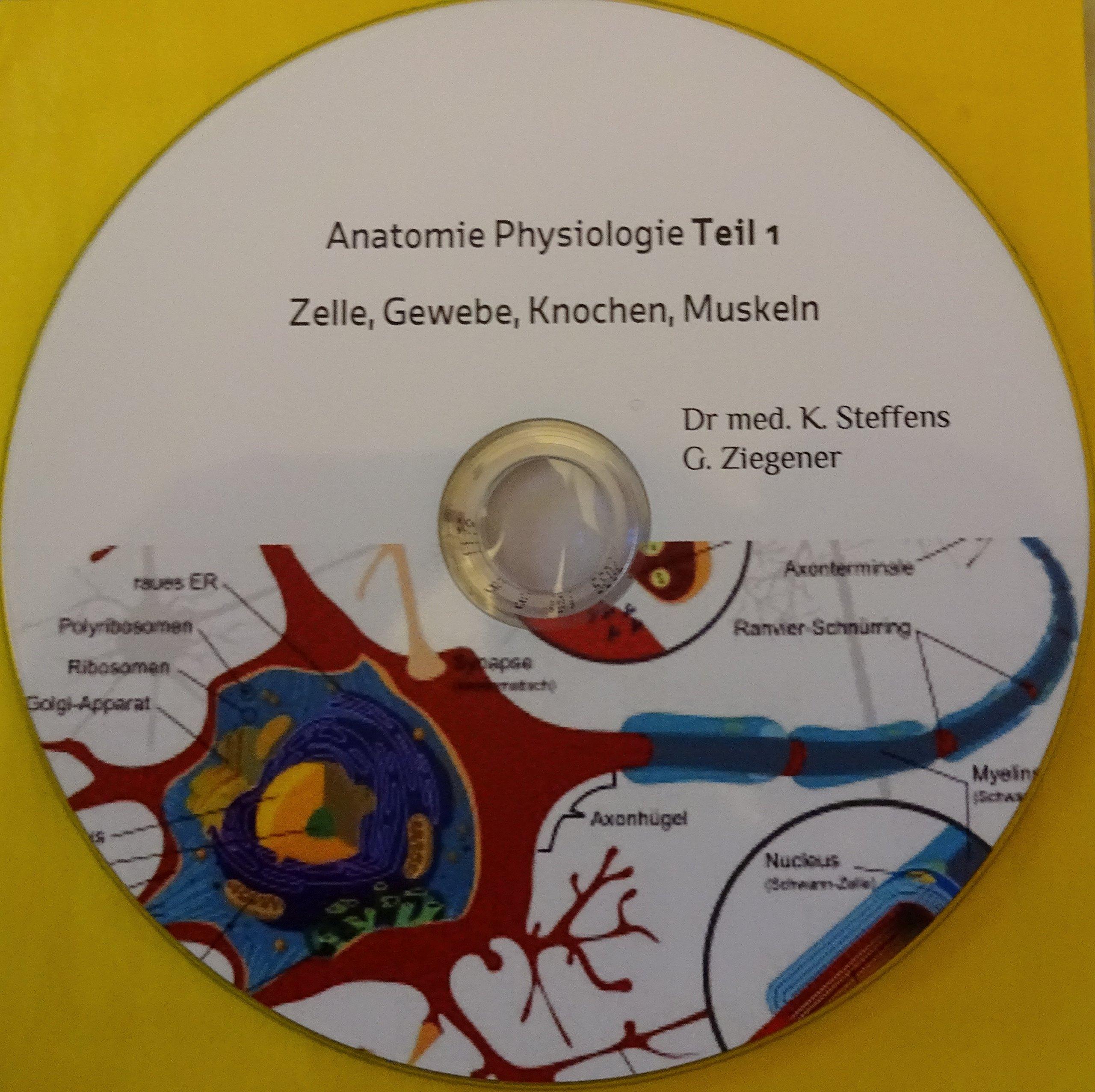 Anatomie und Physiologie interaktiv Teil 1 : Zelle, Gewebe Skelett u ...