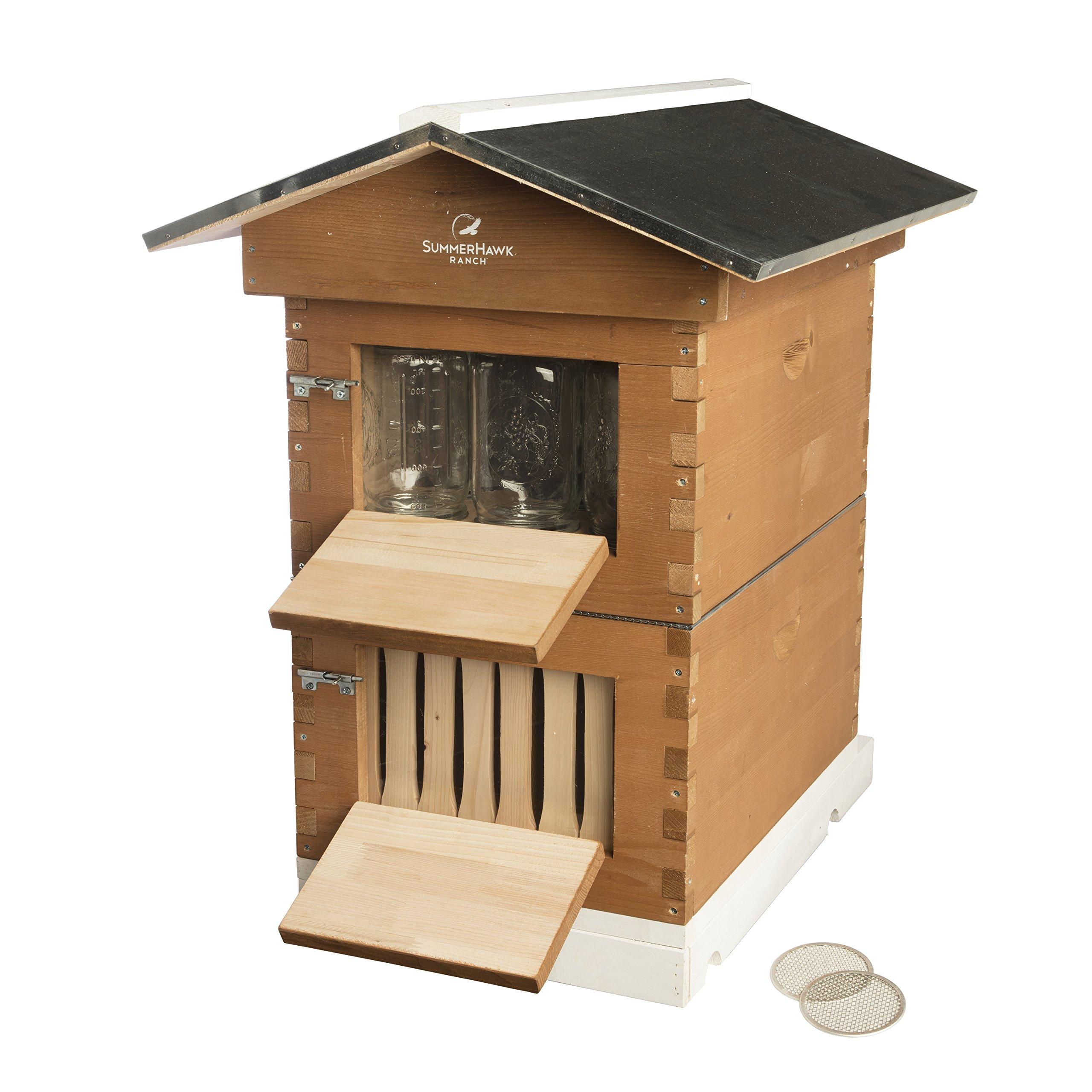 SummerHawk Ranch Honey Jar Hive - features Innovative Honey Harvesting System, Storing Honey directly in Mason Jars, Durable Backyard Bee Hive, Wooden Bee House for Beekeepers by SummerHawk Ranch