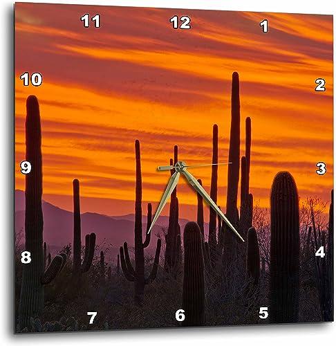 3dRose 3D Rose, Sunset, Saguaro National Park, Arizona, USA-Wall Clock, 15-inch DPP_207773_3