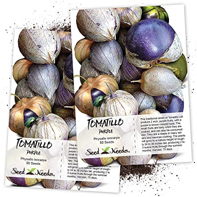 Seed Needs, Purple Milpa Tomatillo (Physalis ixocarpa) Twin Pack of 50 Seeds Each Non-GMO : Vegetable Plants : Garden & Outdoor