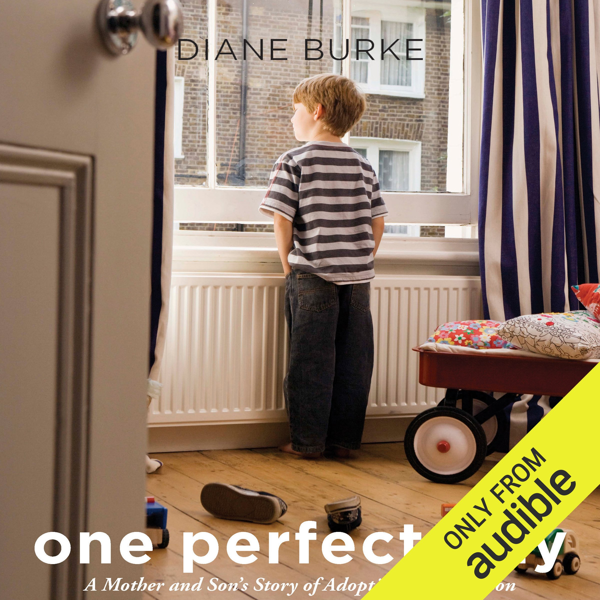 One Perfect Day: A Mother and Son's Journey of Adoption and Reunion