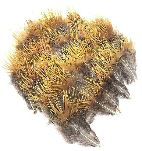 ERGEOB® Faisán Pollo Pluma Pluma Pluma Pollo Palma como Pollo Fuego Tocado de Plumas 5