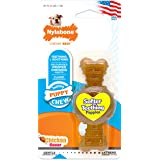 Nylabone Just for Puppies Petit Chicken Flavored Puppy Dog Ring Bone Teething Chew Toy
