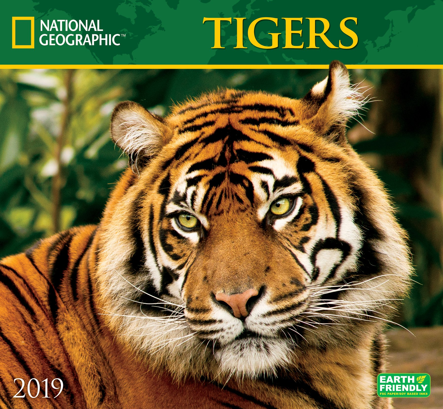 National Geographic Tigers 2019 Wall Calendar Zebra Publishing