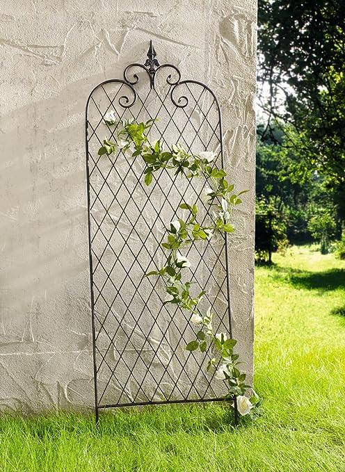 Diseño de Enrejado del Metal Rank Ayuda Jardín Decoración Rosas Columna Rosas Rejilla Escalada Rose: Amazon.es: Jardín