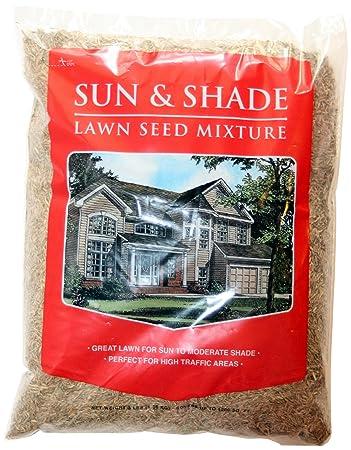 Mountain View Seed 17648 Horizon Economy Sun And Shade Grass Seed Mixture,  3 Pound
