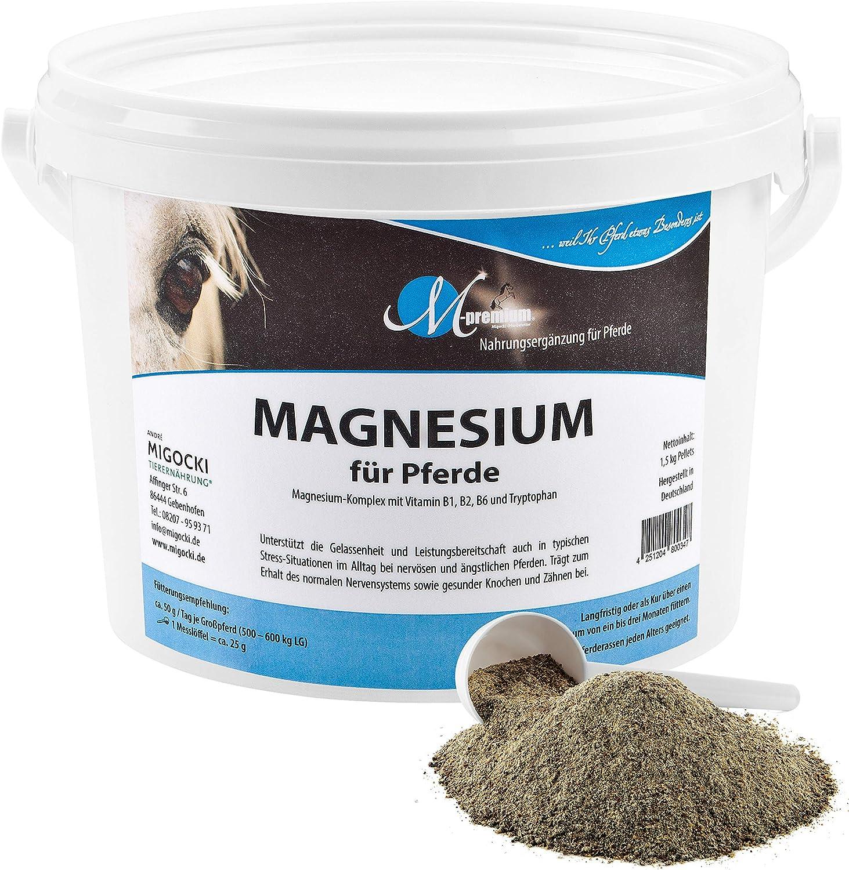 ANDRÉ MIGOCKI TIERERNÄHRUNG M de Premium Magnesio–1,2kg–Alimentos Complemento para Caballos–Soporta la Serenidad y Potencia Reposo de Caballos–getreidefrei, melassefrei, dextrosefrei–Polvo